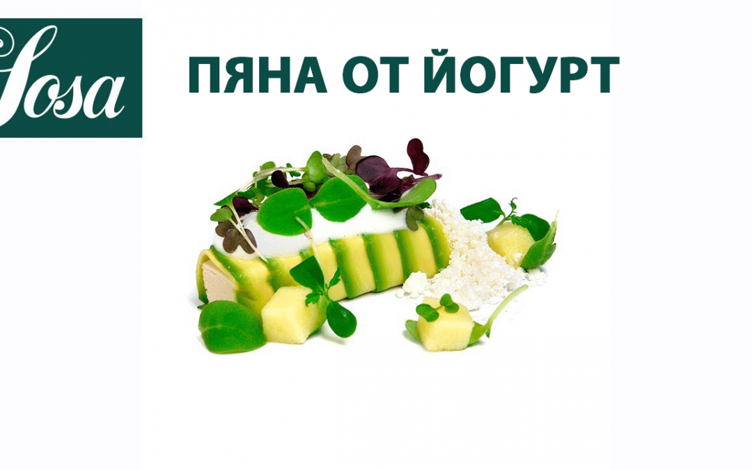 ПЯНА ОТ ЙОГУРТ